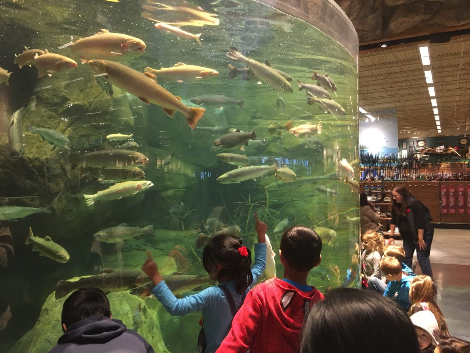 Tsawwassen mills now open photos tour store list hours for Bass pro shop fishing