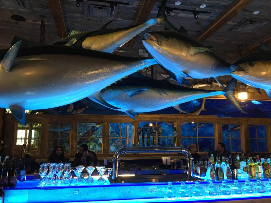 Fish Bowl bar
