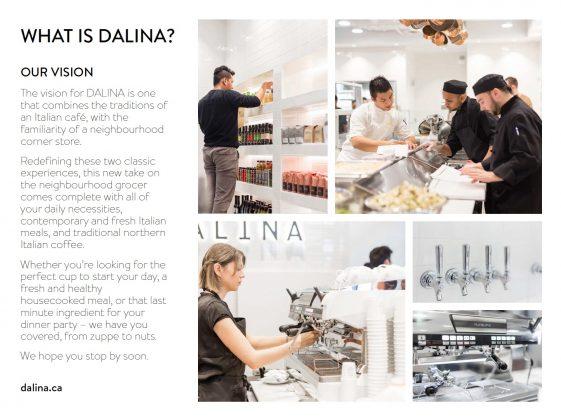 DALINA Vision