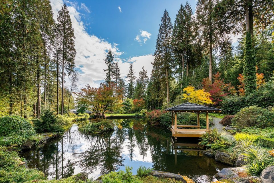 2250 Indian River Crescent North Vancouver pond