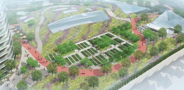 Oakridge Park Meadow Gardens
