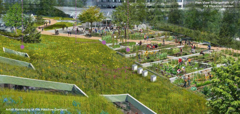 Oakridge Meadow Gardens rendering