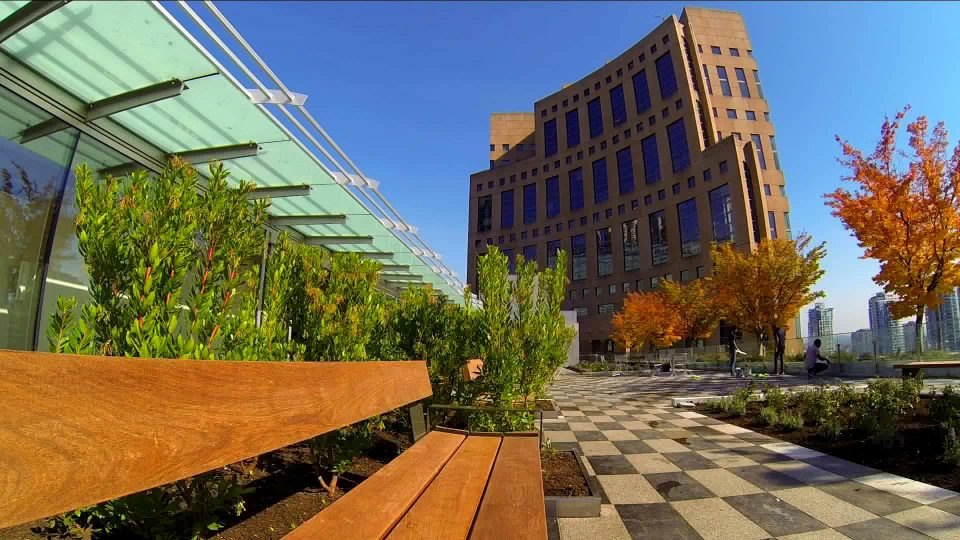 New Vancouver Public Library rooftop patio and garden now open
