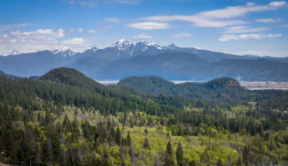 Looking northeast to the Golden Ears mountains and Pitt River