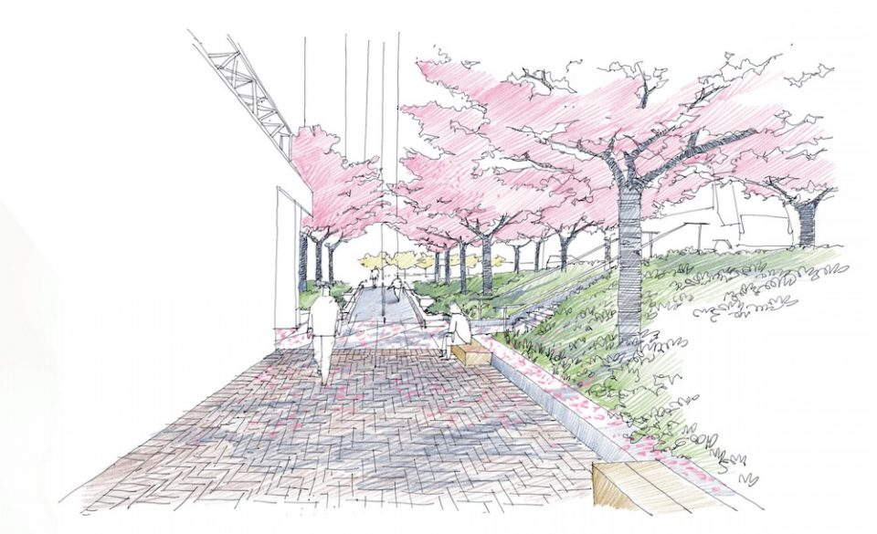 Revised plaza design with ramps and retained cherry trees