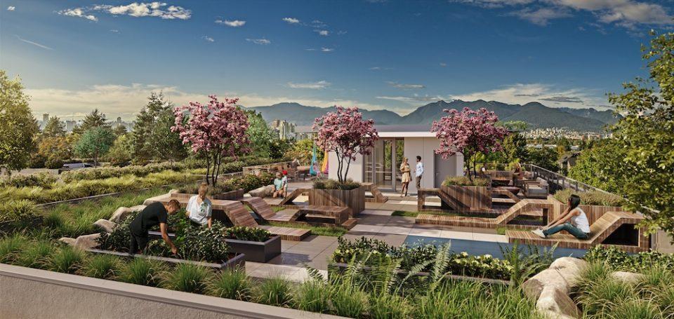 Rooftop amenity area rendering