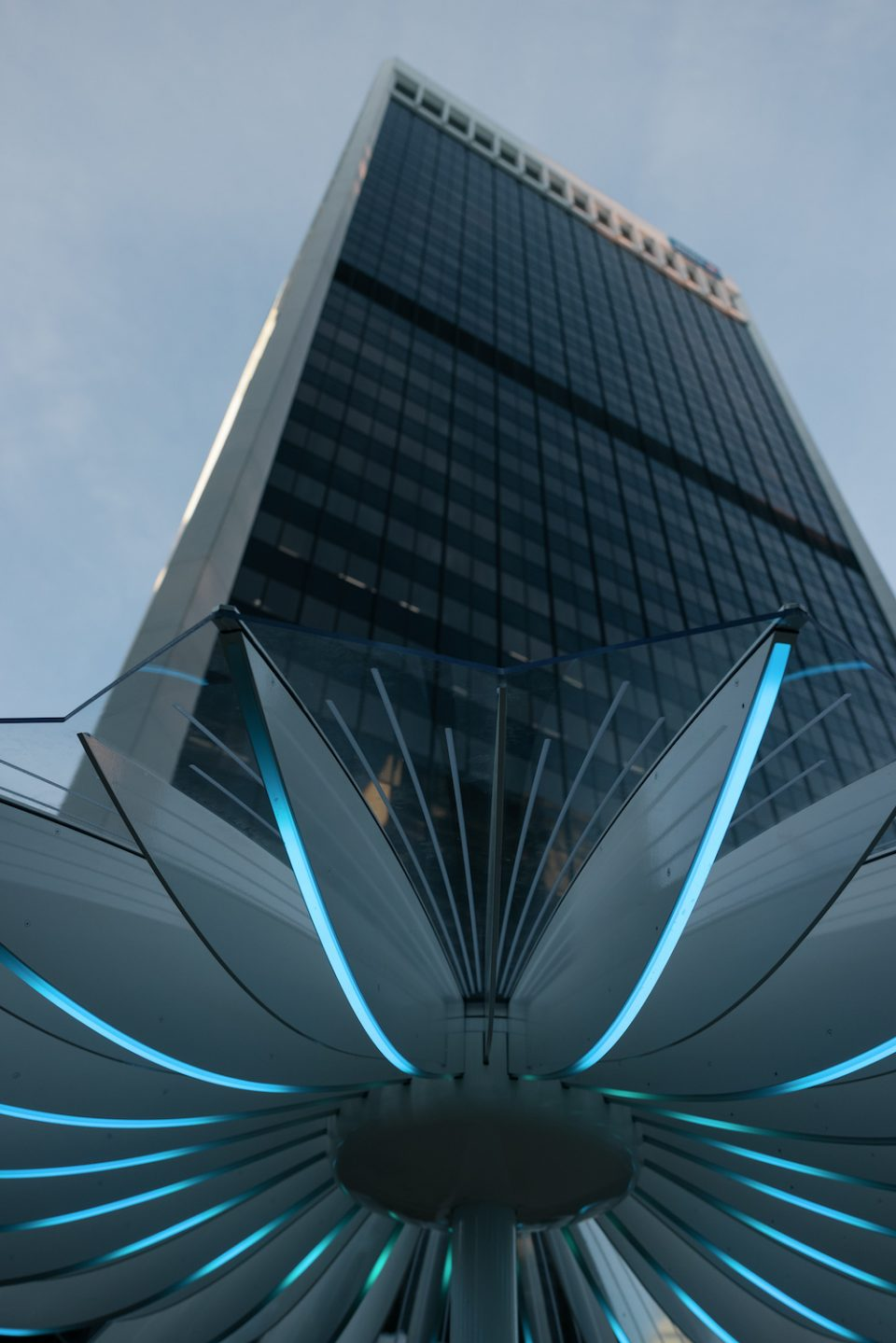 Bentall Centre parasols - Looking up at office tower