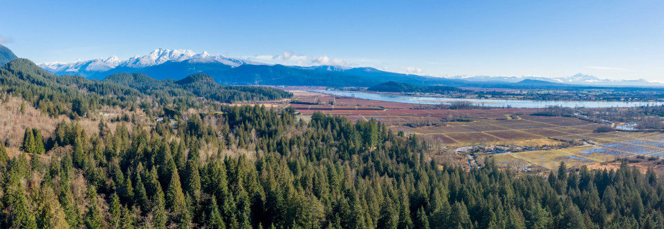 View from Burke Mountain townhouse site